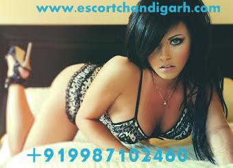 escort services high class call girls Queensland